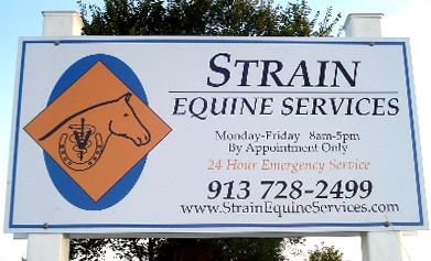 strain equine sign